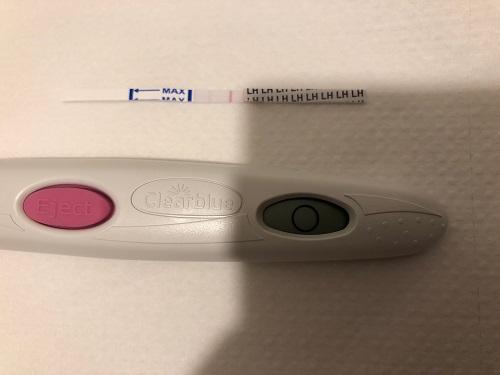 ブログ ドクターズチョイス 排卵検査薬